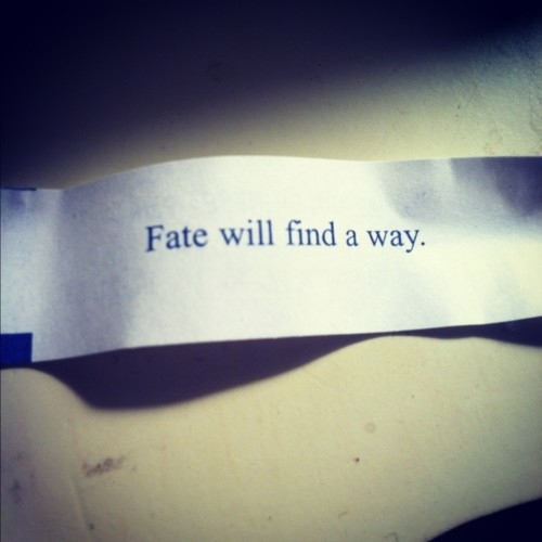 fate_will_find_a_way_quote_large